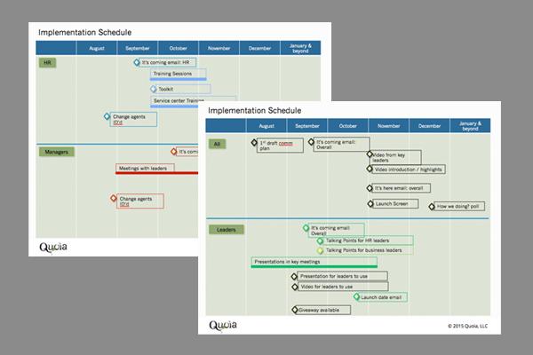 Implementation schedule x 2